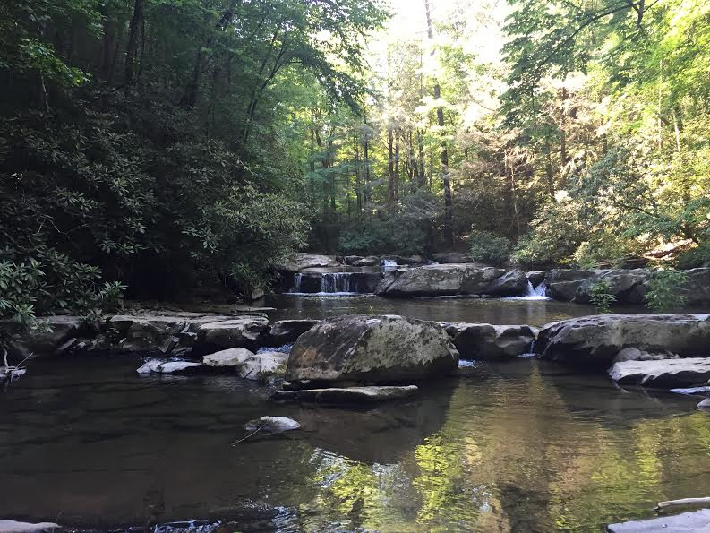 Sunday Hikes: Emery Creek Trail (Part1)