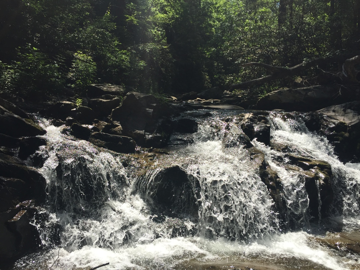 Sunday Hikes: Emery Creek Trail (Part2)