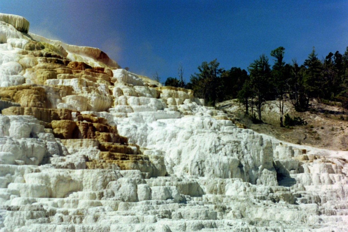 Picture of the Day: Mammoth Hot Springs