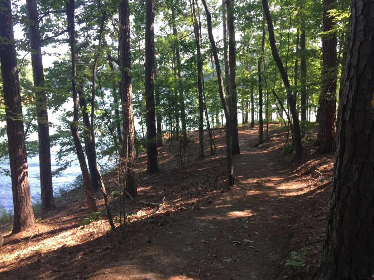 Sunday Hikes: The Homestead Trail at Red Top Mountain StatePark