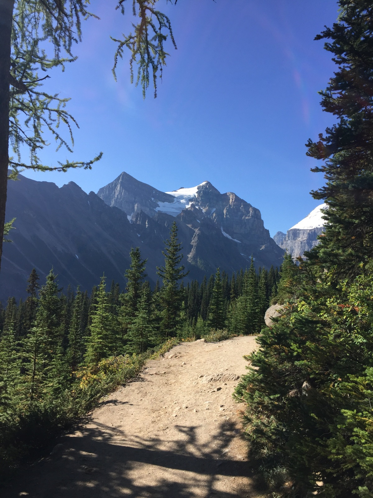 Sunday Hikes:  Lake Agnes Trail in Banff NP