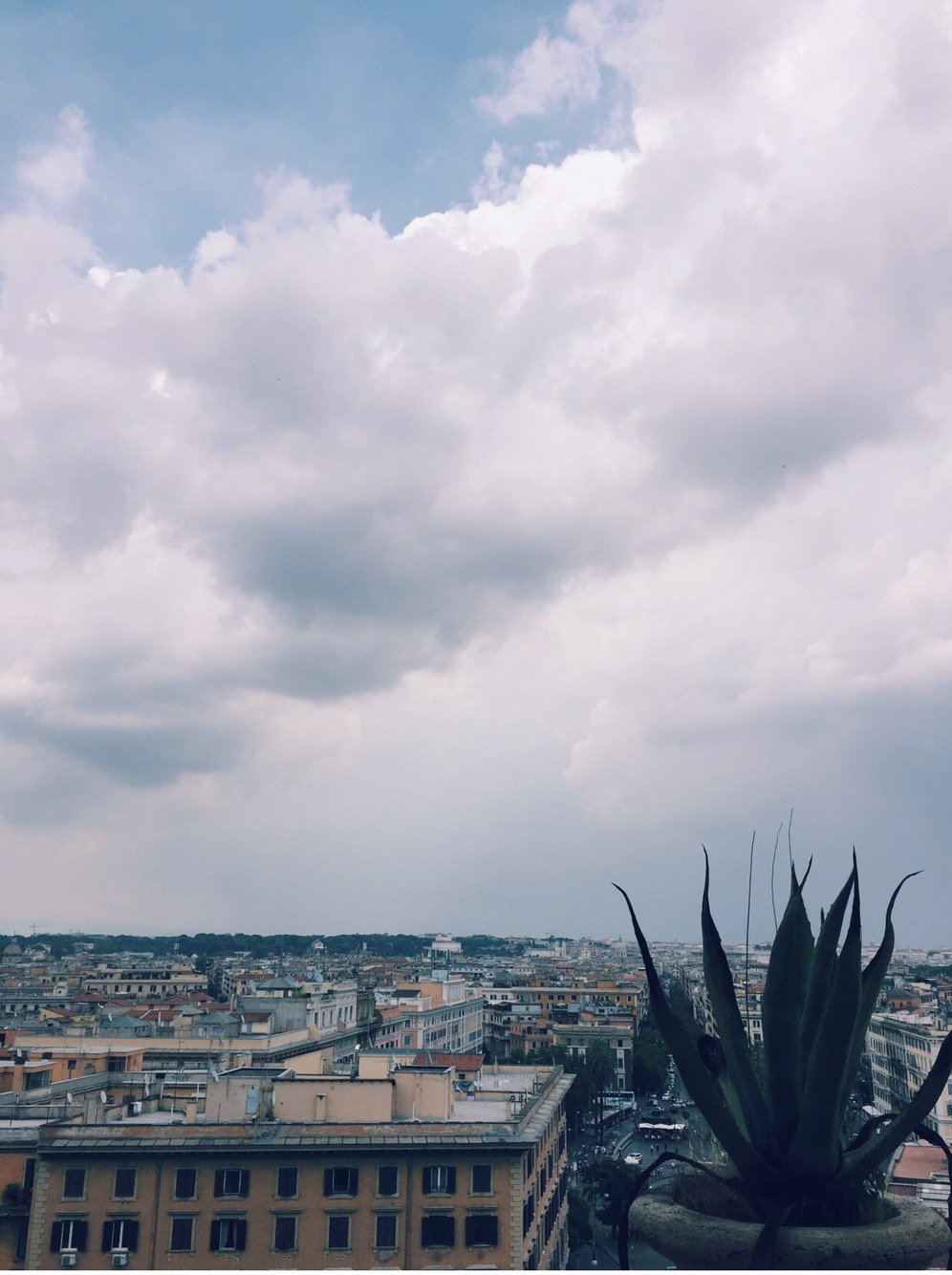 Picture of the Day: Rooftop in VeronaItaly