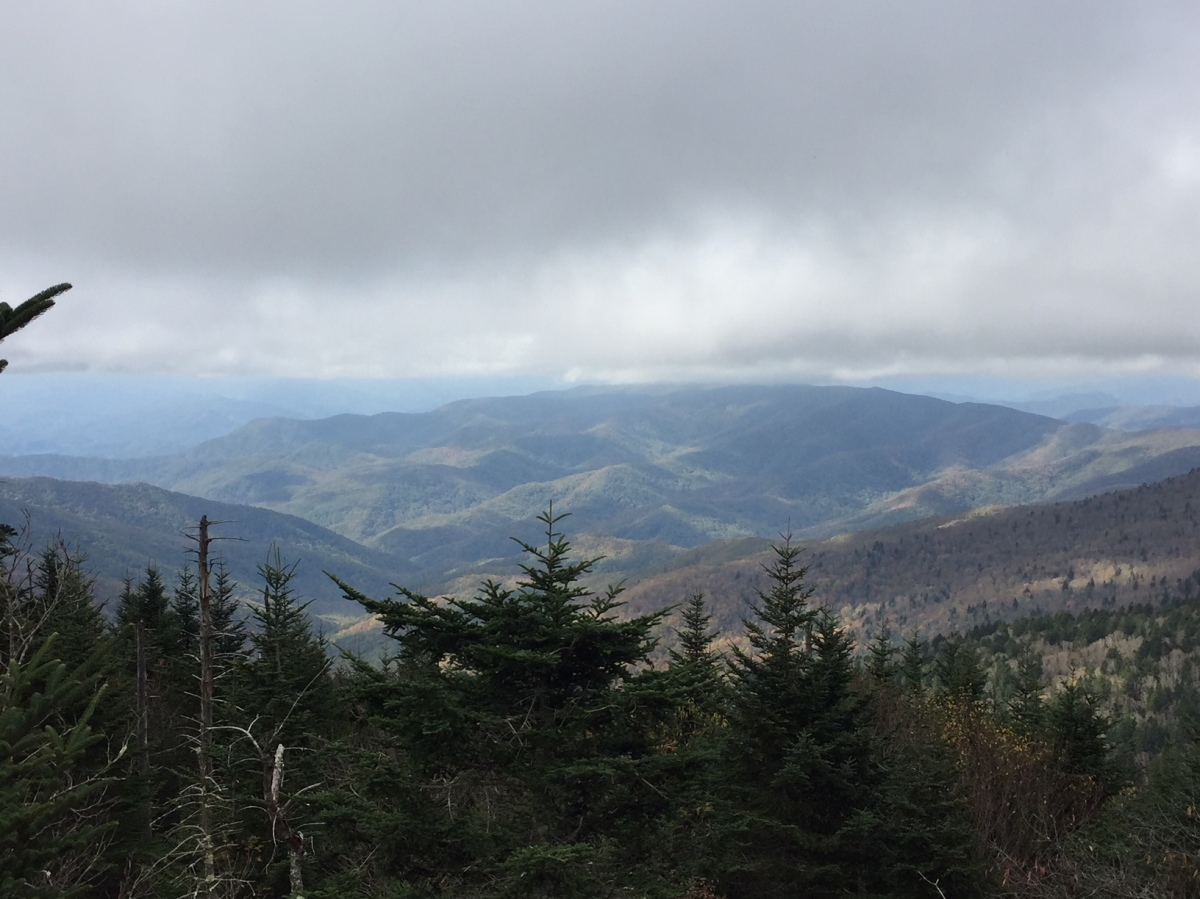 Picture of the Day:  Great Smoky Mountains National Park