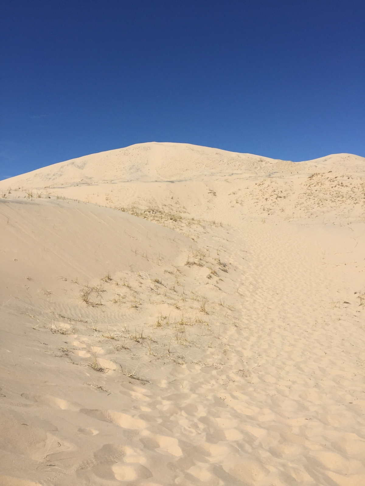 Friday Favorites: Climbing the Kelso Dunes in the Mojave National Preserve