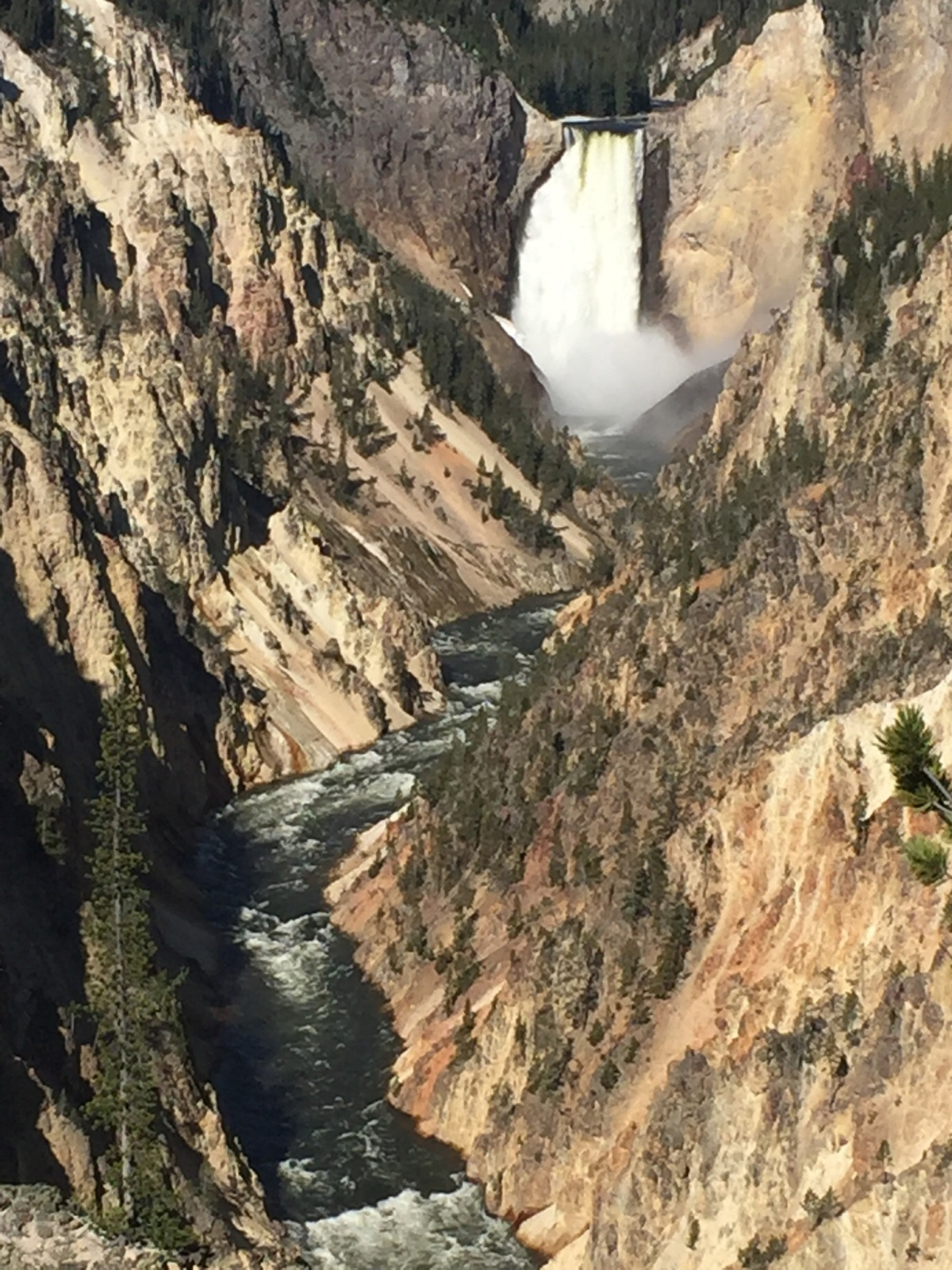 Picture of the Day:  The Grand Canyon of the Yellowstone