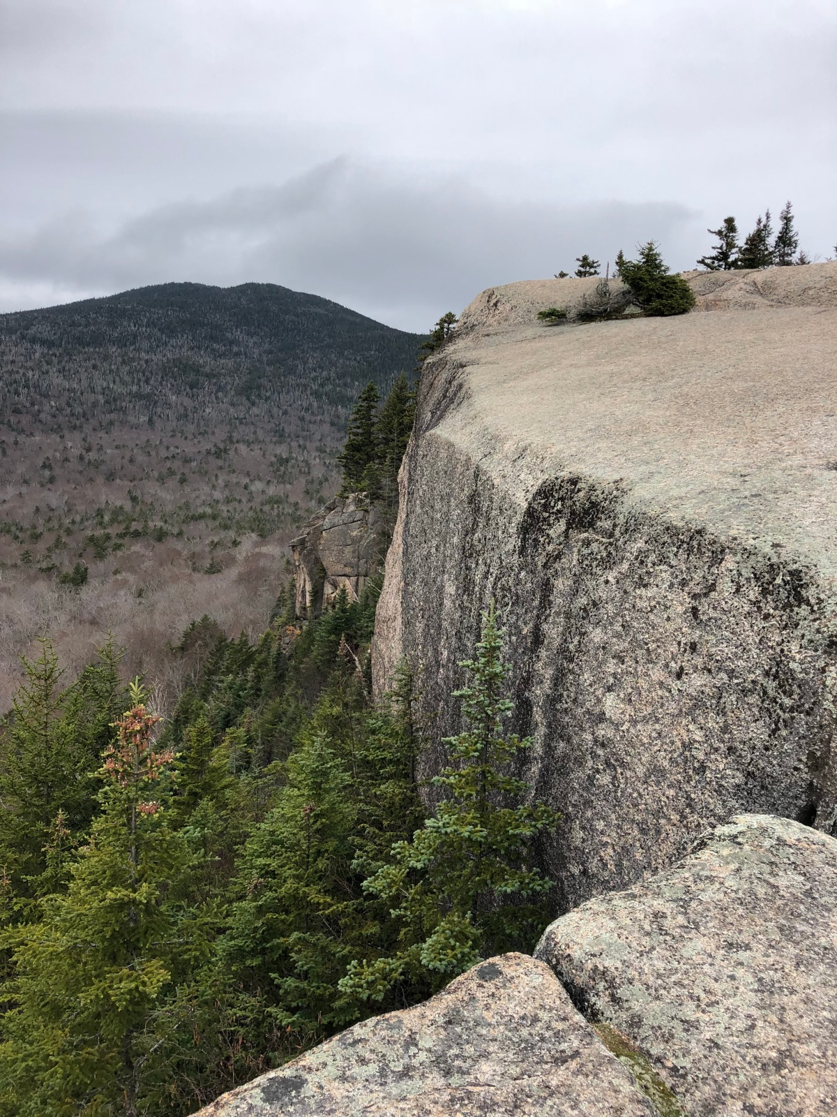 Sunday Hikes:  The Mt Pemigewasset Trail