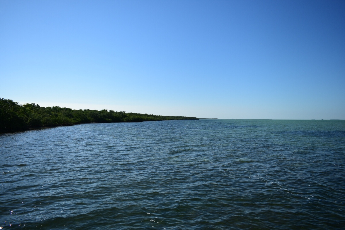 Picture of the Day: Biscayne Bay