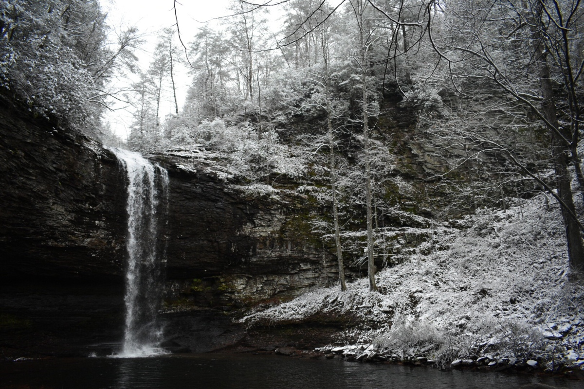 Picture of the Day: Snowy Cloudland Canyon