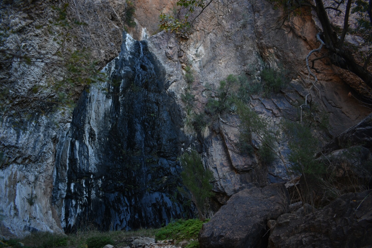 Sunday Hikes: Cattail Falls