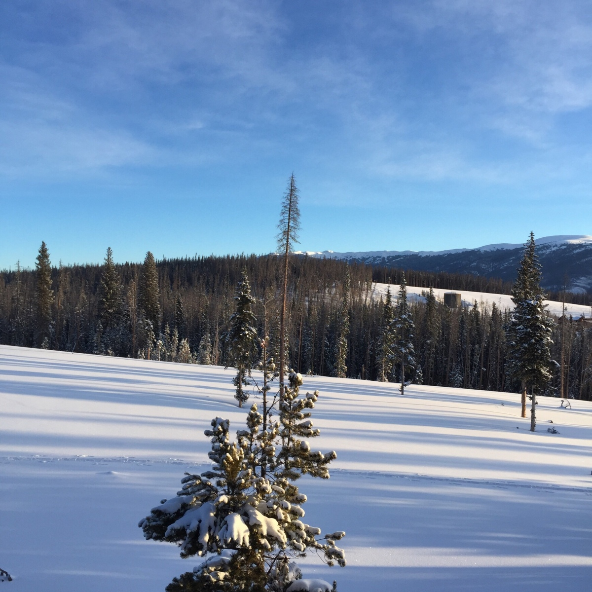 Picture of the Day: SnowyColorado