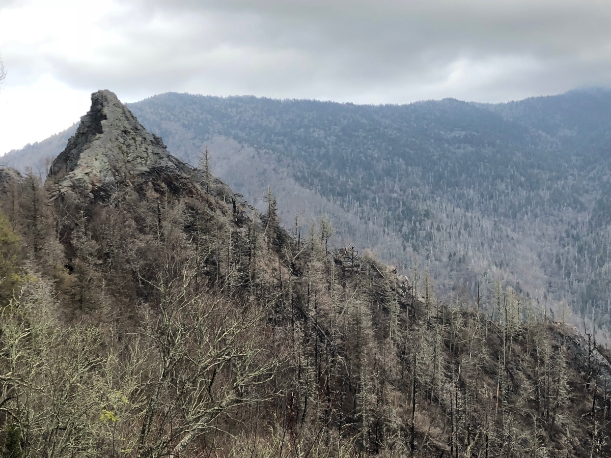 Sunday Hikes:  The Chimney Tops Trail