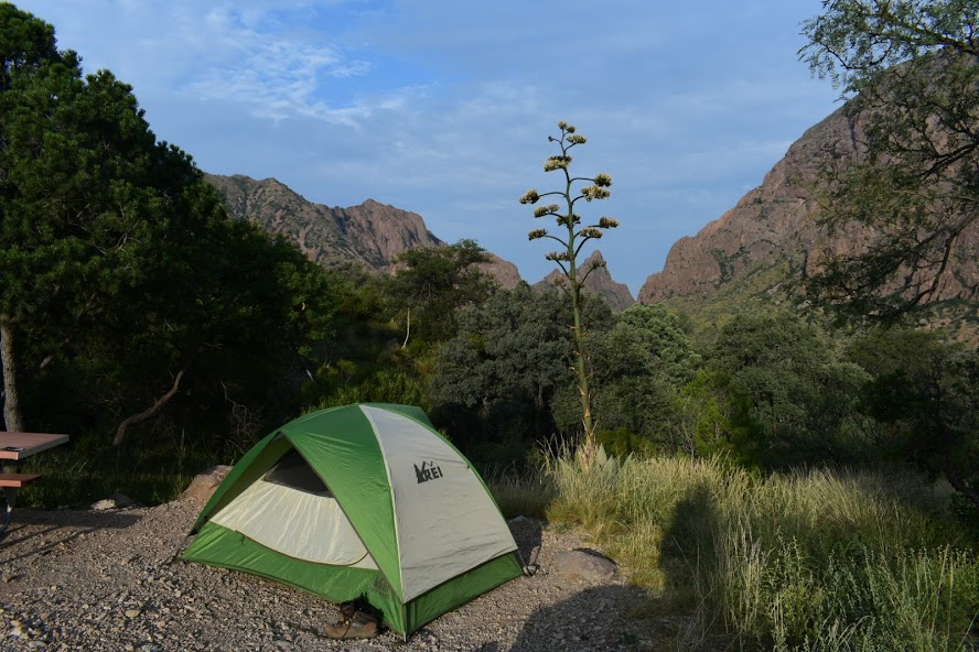 Camping: Chisos Basin Campground, Big Bend National Park