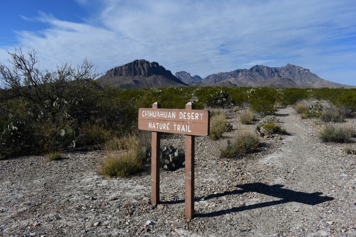 Sunday Hikes: Chihuahuan Desert NatureTrail