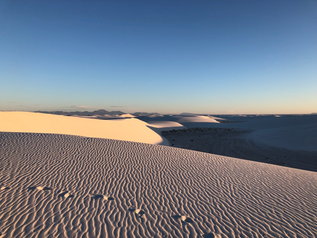Picture of the Day: White Sands Morning
