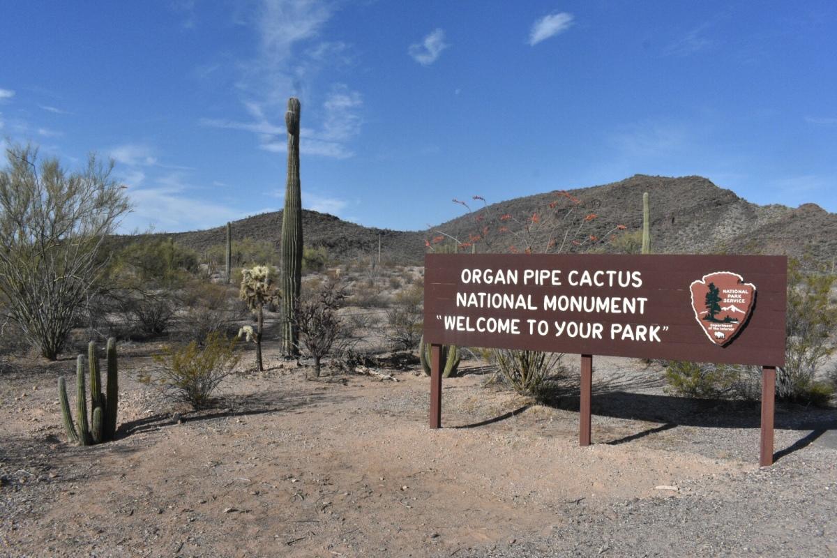 Camping: Alamo CanyonCampground