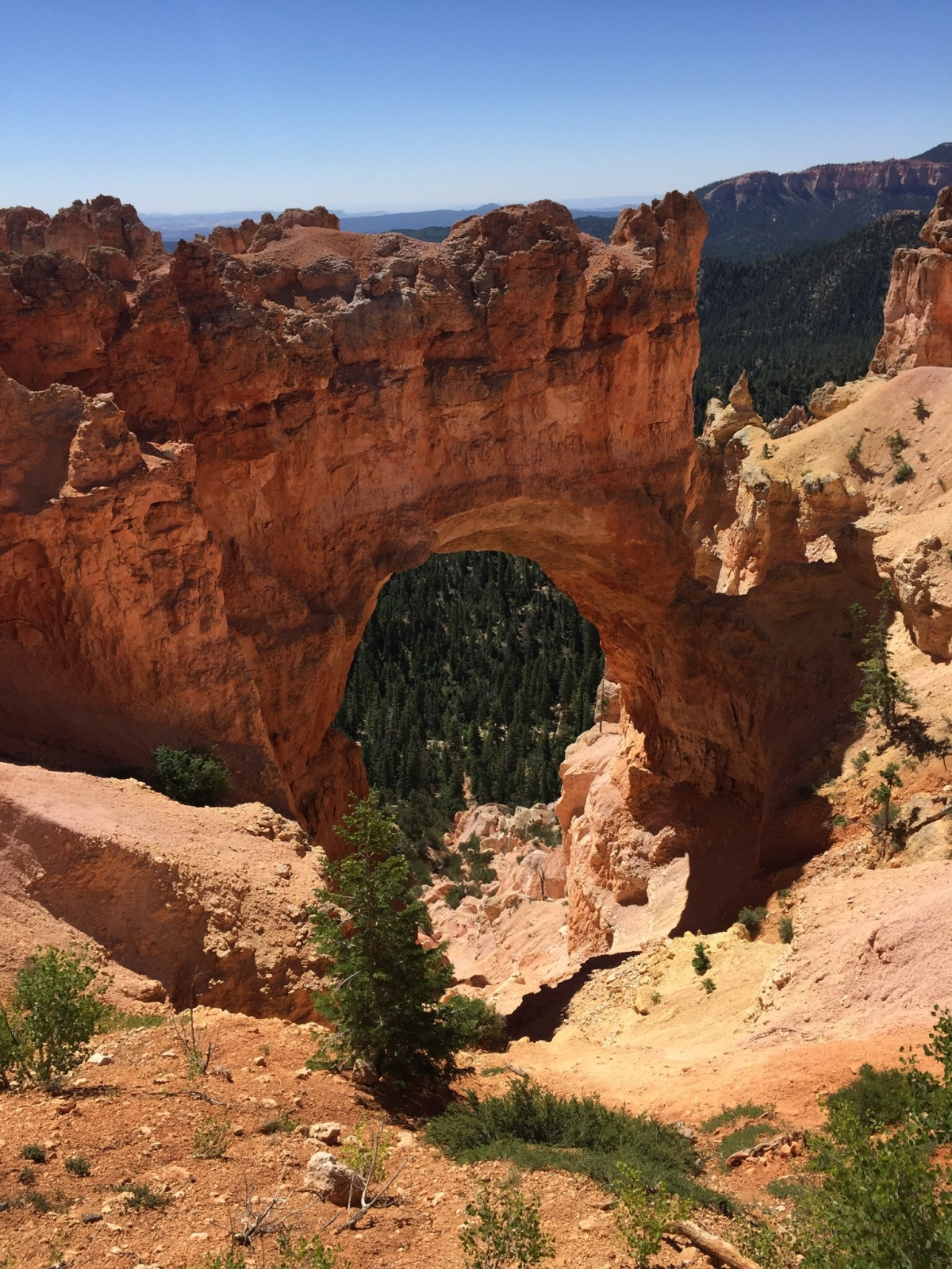 Picture of the Day:  Arch in Bryce Canyon National Park