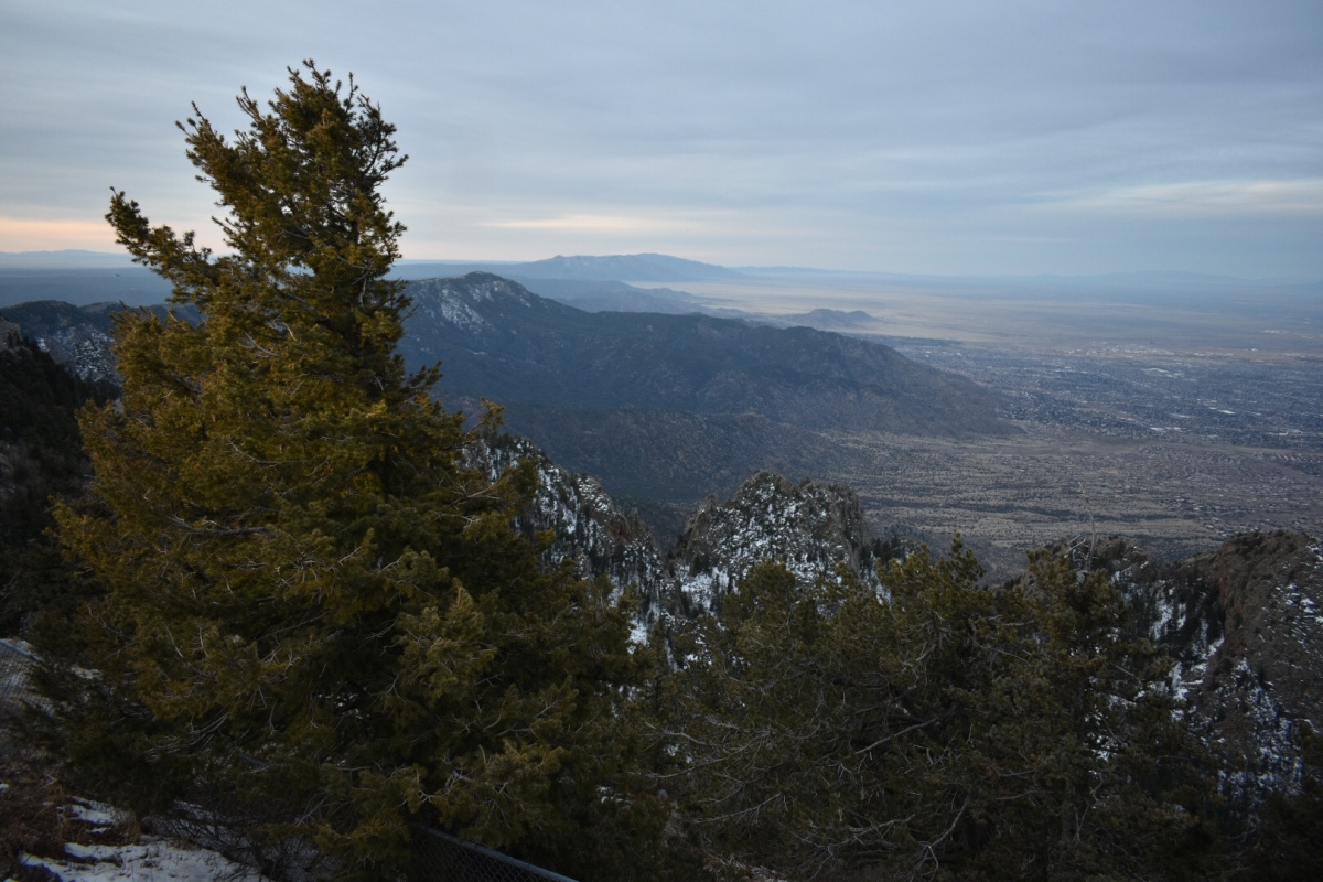 Picture of the Day: Snowy Sandias