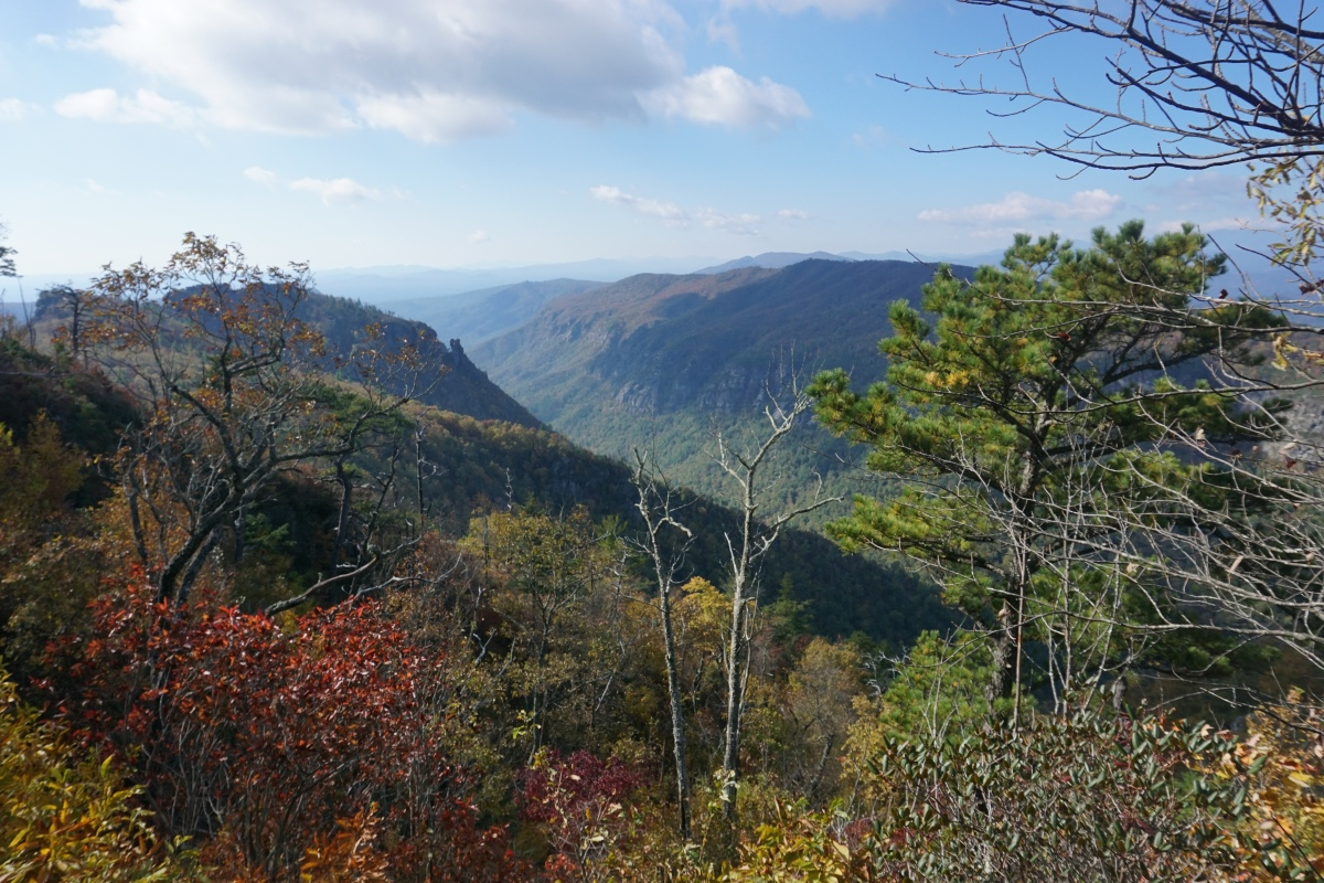 Friday Favorites: Linville Gorge