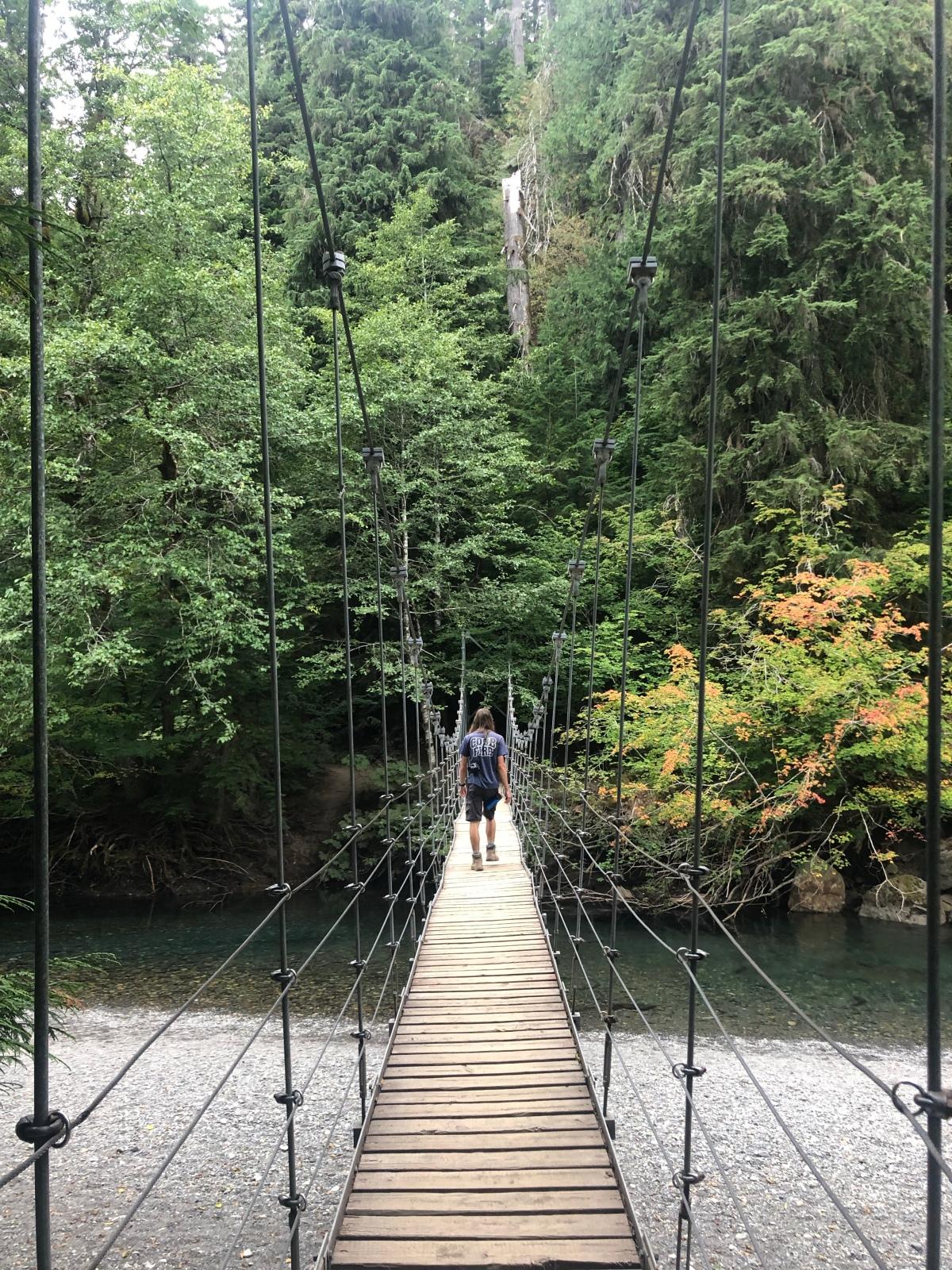 Sunday Hikes:  Grove of thePatriarchs